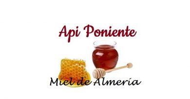 Api-poniente-miel-de-almeria-AlmeriaSabor